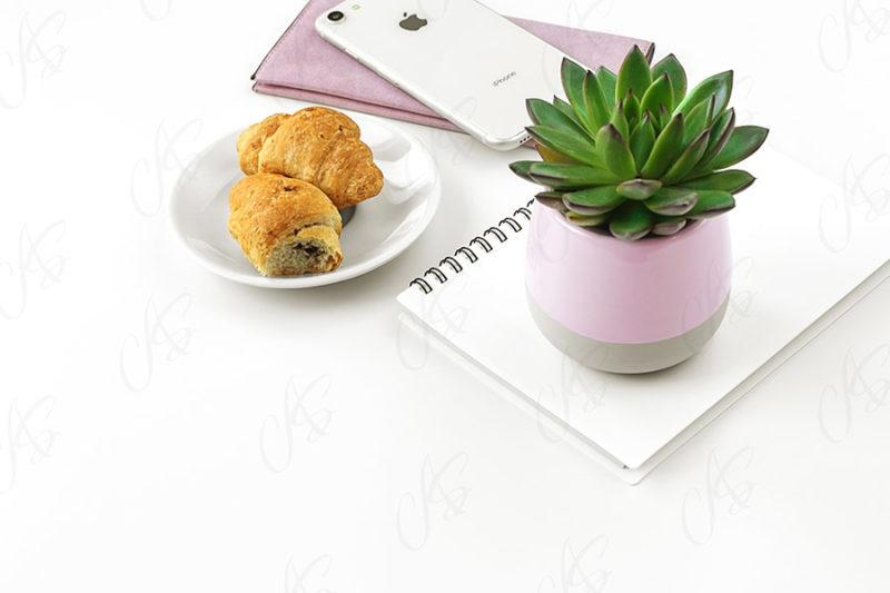 mockup-biale-biurko-kwiatek-90