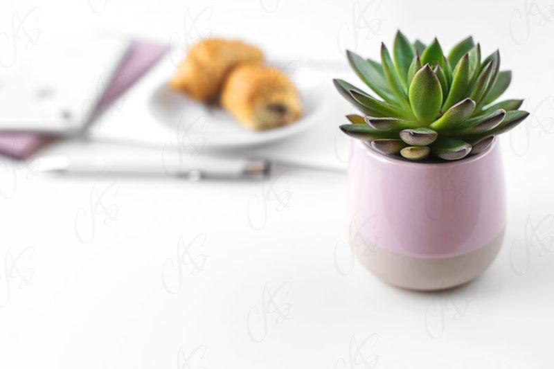 mockup-biale-biurko-kwiatek-91