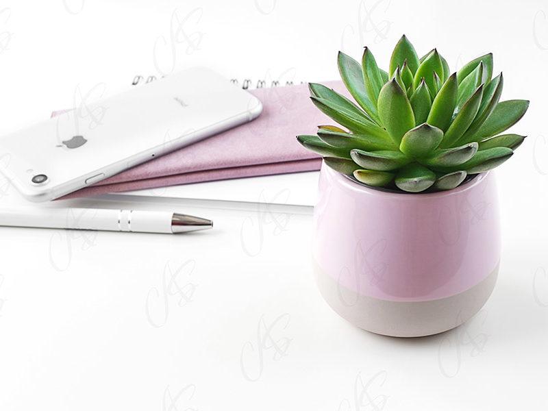 mockup-biale-biurko-kwiatek-92