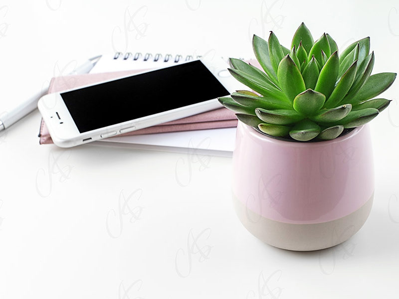 mockup-biale-biurko-kwiatek-94