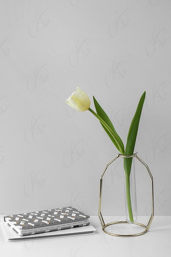 mockup-biurko-kwiatek-tulipan-108