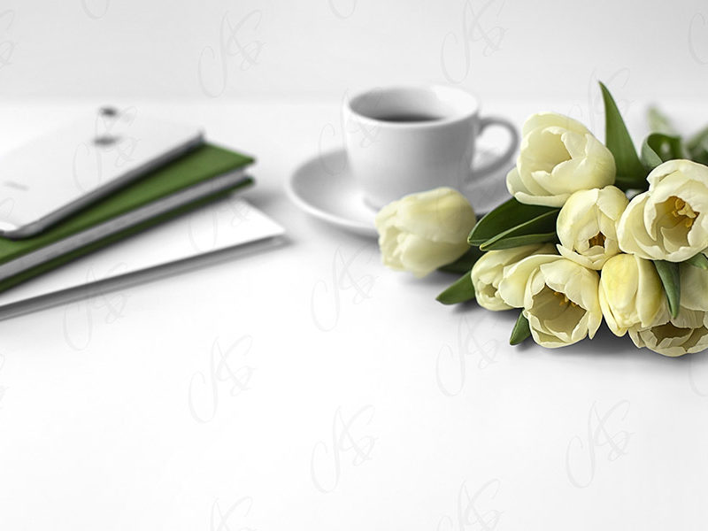 mockup-biurko-kwiatek-tulipan-117
