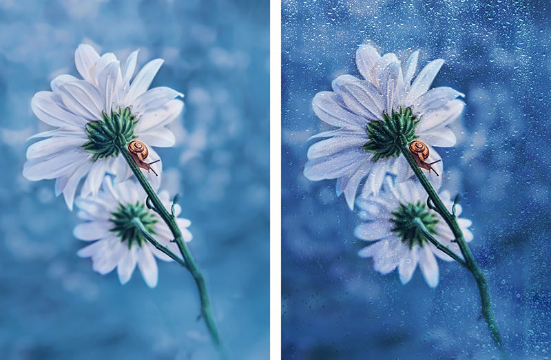 tekstury-artystyczne-photoshop-fotografia-art-przyklad-23