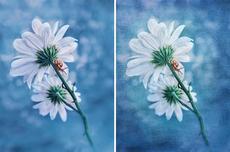 tekstury-artystyczne-photoshop-fotografia-art-przyklad-29