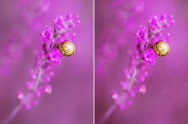tekstury-artystyczne-photoshop-fotografia-art-przyklad-34