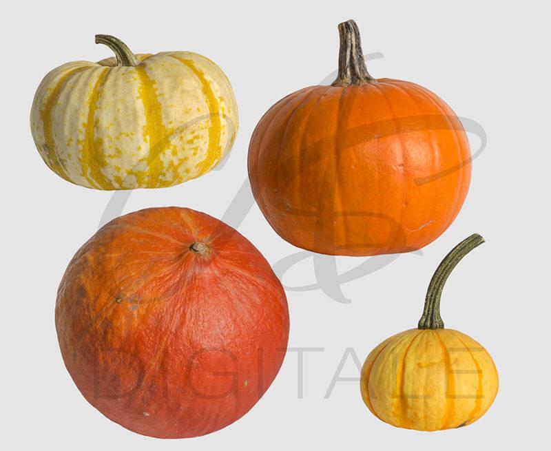 dynie-halloween-pomaranczowe-biala-nakladki-fotograficzne-photoshop-psd-png-edycja-zdjec-2