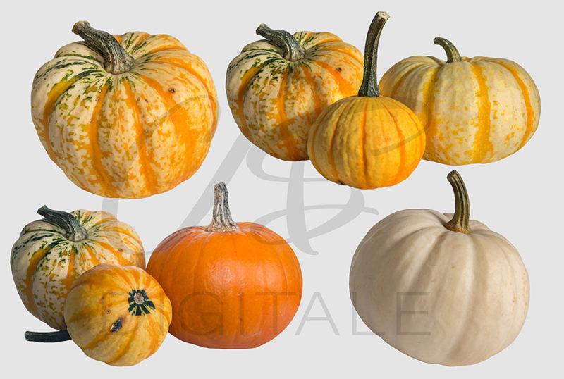 dynie-halloween-pomaranczowe-biala-nakladki-fotograficzne-photoshop-psd-png-edycja-zdjec-3