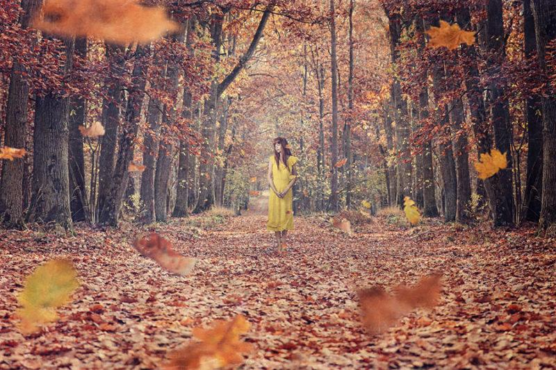 jesien-liscie-spadajace-kolorowe-nakladki-fotograficzne-photoshop-edycja-zdjec-8