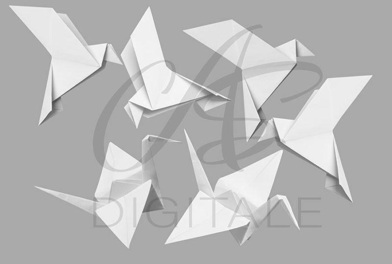 origami-statek-ptak-kolorowe-biale-nakladki-fotograficzne-photoshop-edycja-zdjec-2
