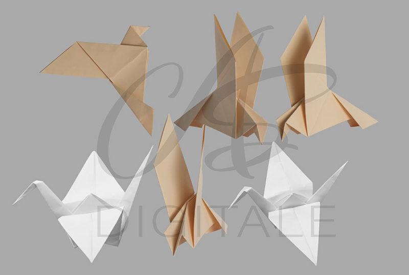 origami-statek-ptak-kolorowe-biale-nakladki-fotograficzne-photoshop-edycja-zdjec-3