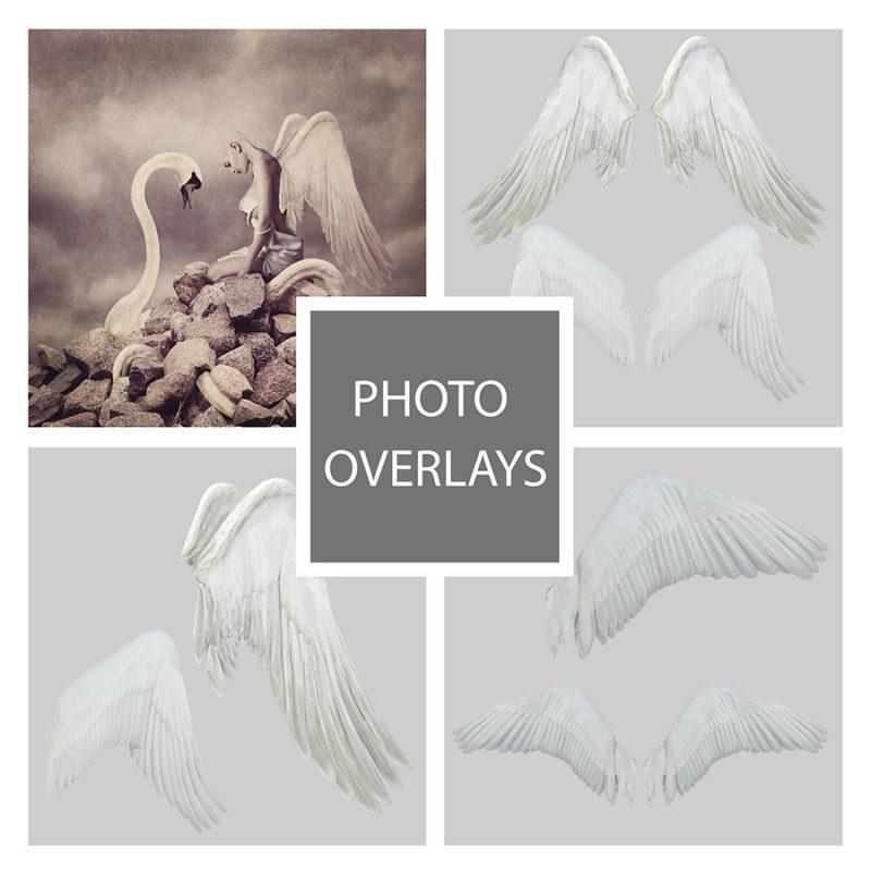 skrzydła-labedzia-aniola-biale-czarne-nakladki-fotograficzne-photoshop-psd-png-edycja-zdjec-1