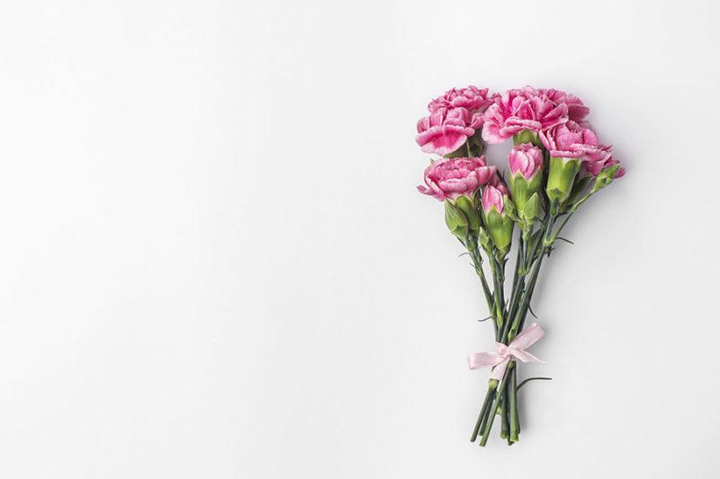 kolorowe-kwiaty-zdjecia-stockowe-darmowe-pobierz-7