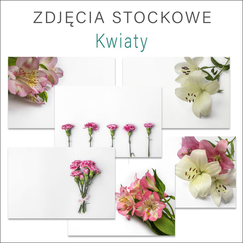 kolorowe-kwiaty-zdjecia-stockowe-darmowe-pobierz