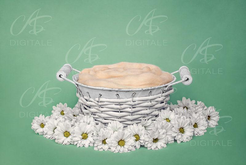 tło-cyfrowe-noworodek-newborn-digital-backdrop-bialy-wiklinowy-koszyk-biale-kwiatki