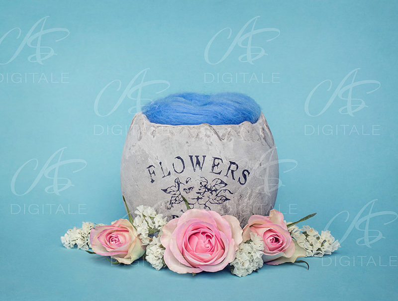 tło-cyfrowe-noworodek-newborn-digital-backdrop-kolorowe-kwiaty-ogrod-niebieskie-tlo