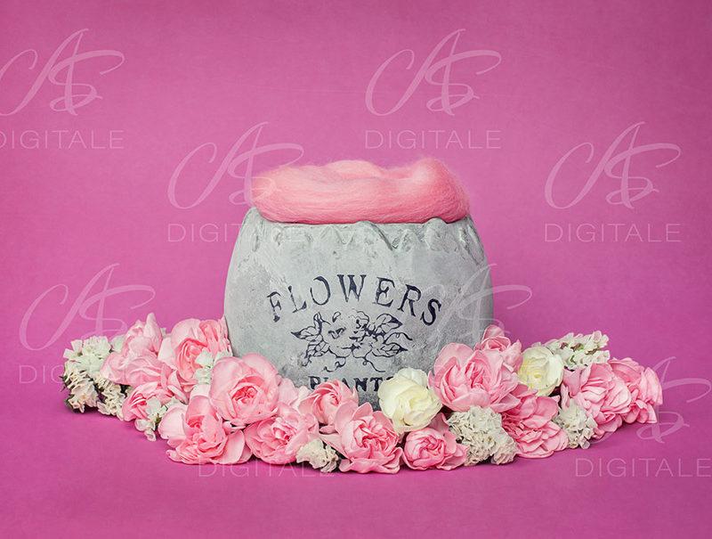 tło-cyfrowe-noworodek-newborn-digital-backdrop-kolorowe-kwiaty-ogrod-rozowy