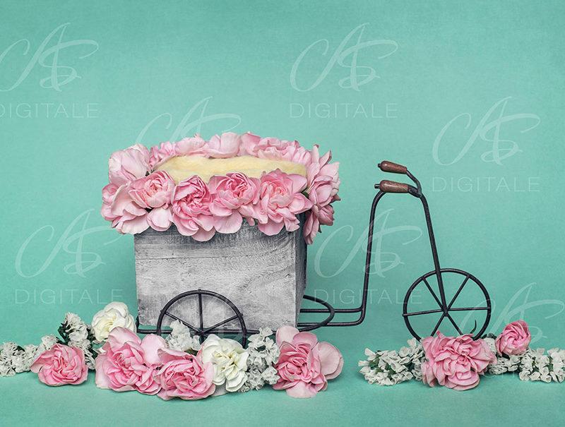 tło-cyfrowe-noworodek-newborn-digital-backdrop-kolorowe-kwiaty-rower-zielone-tlo