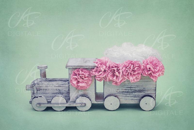 tło-cyfrowe-noworodek-newborn-digital-backdrop-pociąg-zielen-rozowe-kwiaty