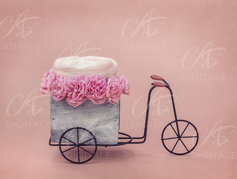 tło-cyfrowe-noworodek-newborn-digital-backdrop-rowerek-kwiaty