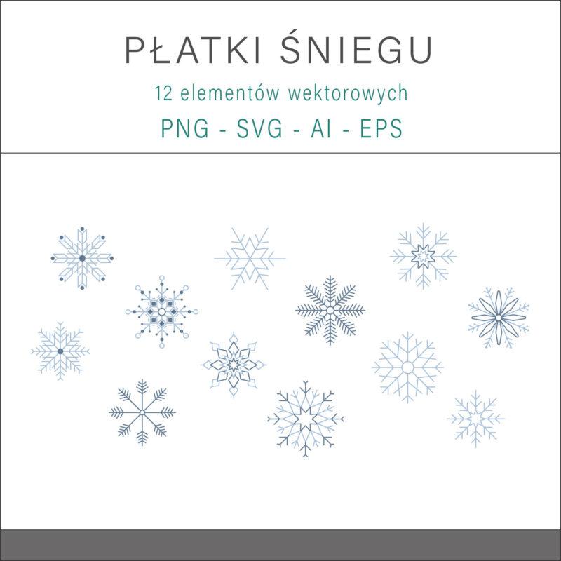 grafika-wektorowa-png-svg-ai-eps-platki-sniegu-zima-swieta-ilustracja-clip-art-1