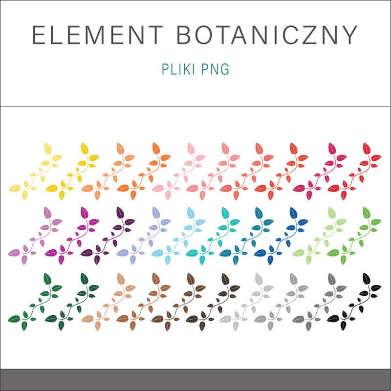 grafika-wektorowa-png-clipart-botanika-element-botaniczny-liscie-kolorowe-ozdobne-ilustracja-rysunek-wektorowy-1