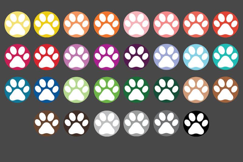 grafika-wektorowa-png-clipart-lapy-zwierzat-psa-kota-kolorowe-ilustracja-rysunek-wektorowy-3