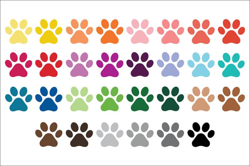 grafika-wektorowa-png-clipart-lapy-zwierzat-psa-kota-kolorowe-ilustracja-rysunek-wektorowy-4