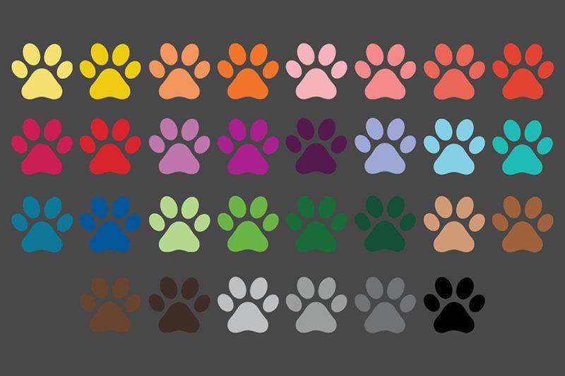 grafika-wektorowa-png-clipart-lapy-zwierzat-psa-kota-kolorowe-ilustracja-rysunek-wektorowy-5