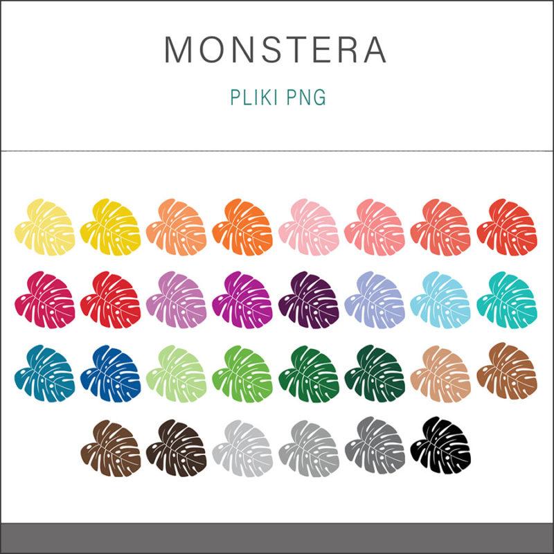 grafika-wektorowa-png-clipart-monstera-lisc-botanika-kolory-teczy-ilustracja-rysunek-wektorowy-1