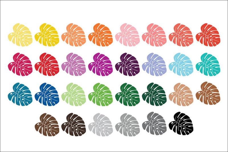 grafika-wektorowa-png-clipart-monstera-lisc-botanika-kolory-teczy-ilustracja-rysunek-wektorowy-2